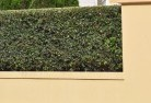 Airdmillan Decorative fencing 30